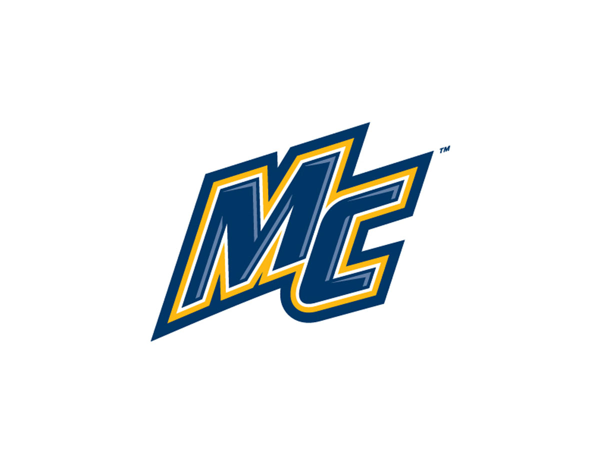 hockeyeastonline com hockey east logo downloads logos online school login logos online school curriculum